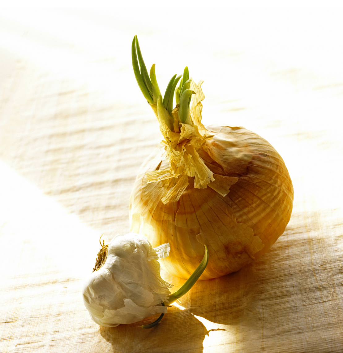 onion_garlic